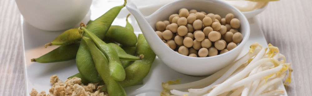 alter'native food forum